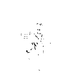 City of Dellwood